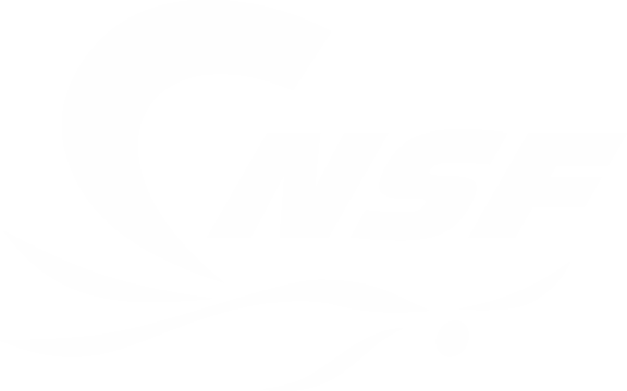 Clud De Natation Saint-Félicien logo