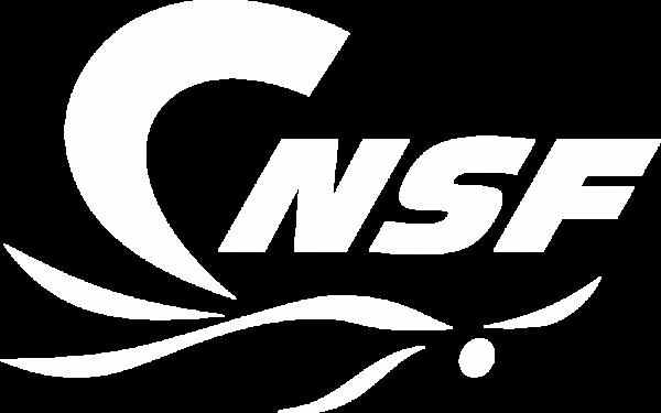 logo club de naation de st-félicien
